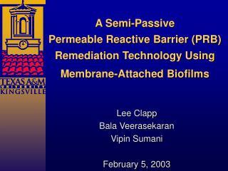 Lee Clapp Bala Veerasekaran Vipin Sumani February 5, 2003