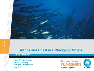 Marine and Coast in a Changing Climate