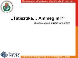 """""""Tatisztika… Ammeg mi?"""""""