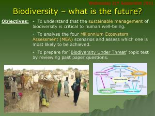 Biodiversity – what is the future?