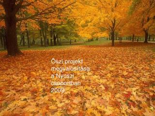 Őszi projekt megvalósítása a Nyuszi  csoportban 2009.