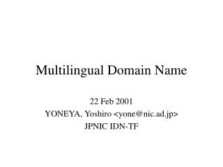 Multilingual Domain Name