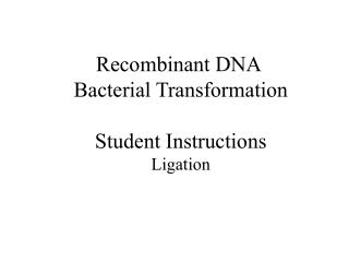 Recombinant DNA  Bacterial Transformation Student Instructions Ligation