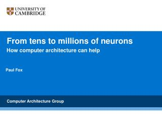 From tens to millions of neurons