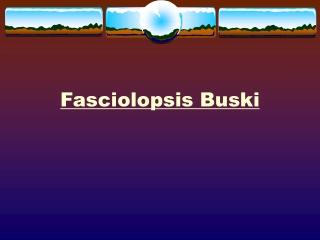 Fasciolopsis buski  Flukes