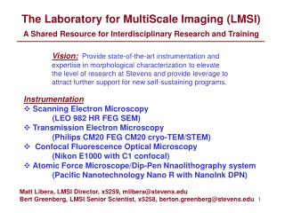 The Laboratory for MultiScale Imaging (LMSI)