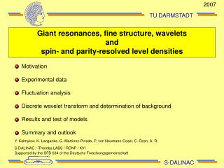 Giant resonances, fine structure, wavelets and spin- and parity-resolved level densities