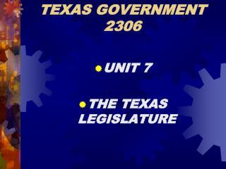 TEXAS GOVERNMENT 2306