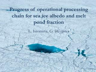 Progress of operational processing chain for sea ice albedo and melt pond fraction