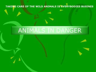TAKING CARE OF THE WILD ANIMALS IS EVERYBODIES BUSINES