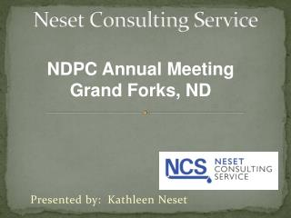 Neset Consulting Service
