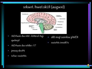 srkwrI. hweI.skUl (augwxI)