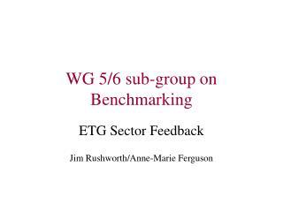 WG 5/6 sub-group on Benchmarking