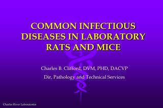 COMMON INFECTIOUS DISEASES IN LABORATORY RATS AND MICE