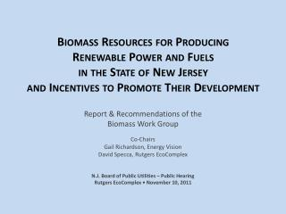 Report & Recommendations of the Biomass Work Group Co-Chairs Gail Richardson, Energy Vision