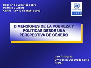 Reunión de Expertos sobre Pobreza y Género  CEPAL, 12 y 13 de agosto 2003
