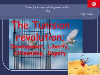 Center for strategic development studies   SBZ 17 April 2011