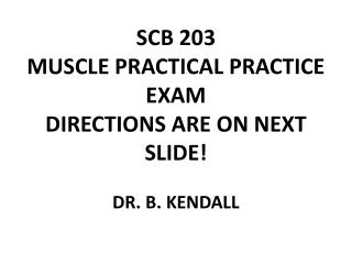 SCB 203 MUSCLE PRACTICAL PRACTICE EXAM  DIRECTIONS ARE ON NEXT SLIDE! DR. B. KENDALL