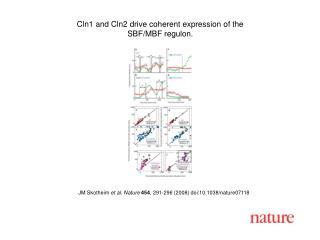 JM Skotheim et al. Nature 454 , 291-296 (2008) doi:10.1038/nature07118