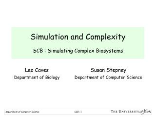 Simulation and Complexity SCB : Simulating Complex Biosystems