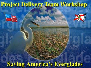 Saving America's Everglades