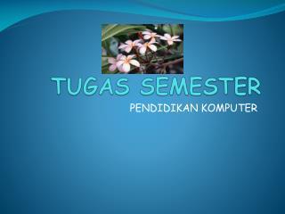 TUGAS SEMESTER