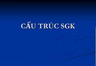 CẤU TRÚC SGK