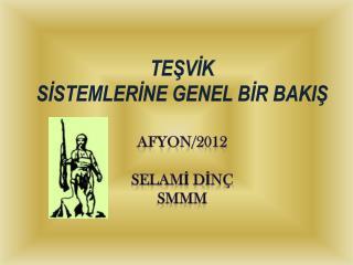 TEŞVİK  SİSTEMLERİNE GENEL BİR BAKIŞ AFYON/2012 Selamİ DİNÇ  SMMM
