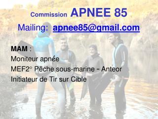 Commission  APNEE 85