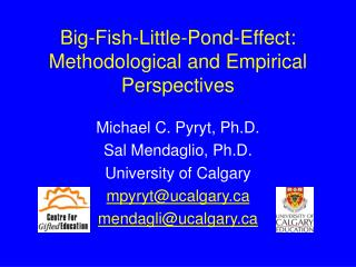 Big-Fish-Little-Pond-Effect: Methodological and Empirical Perspectives