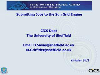 Submitting Jobs to the Sun Grid Engine