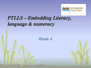 PTLLS – Embedding Literacy, language & numeracy
