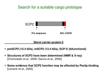 Search for a suitable cargo prototype