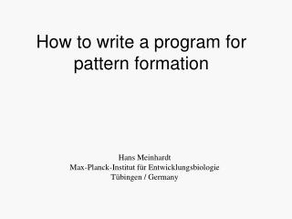 How to write a program for pattern formation