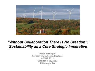"""""""Without Collaboration There is No Creation"""": Sustainability as a Core Strategic Imperative"""