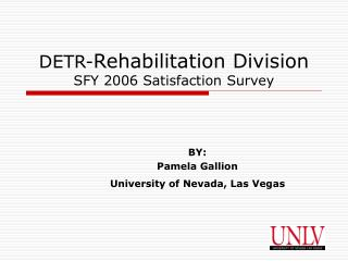 DETR- Rehabilitation Division  SFY 2006 Satisfaction Survey