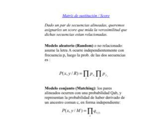 Distribucion del maximo de N scores de matching de secuencias random independientes