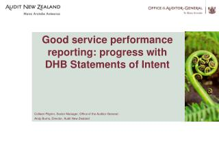 Good service performance reporting: progress with DHB Statements of Intent