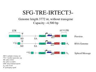 SFG-TRE-IRTECT3-