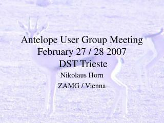Antelope User Group Meeting February 27 / 28 2007   DST Trieste