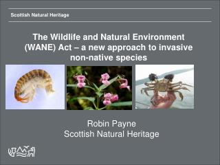 The Wildlife and Natural Environment (WANE) Act – a new approach to invasive non-native species