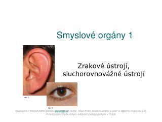 Smyslové orgány 1