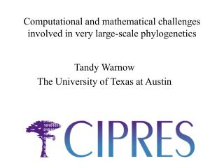 Computational and mathematical challenges involved in very large-scale phylogenetics