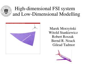 High-dimensional FSI system  and Low-Dimensional Modelling
