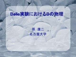 Belle 実験における B の物理