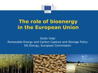 The role of bioenergy in the European Union