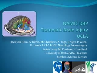 NAMIC DBP  Traumatic Brain Injury UCLA