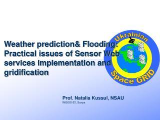 Prof. Natalia Kussul, NSAU WGISS-25, Sanya