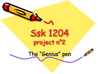 Ssk 1204 project n°2