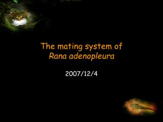 The mating system of  Rana adenopleura